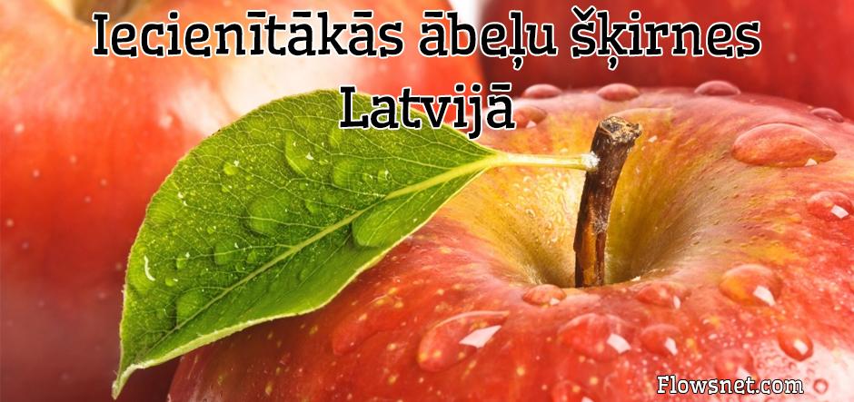 IECIENĪTĀKĀS ĀBEĻU ŠĶIRNES LATVIJĀ