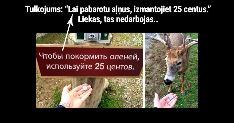 LAI PABAROTU AĻŅUS, IZMANTOJIET 25 CENTUS..