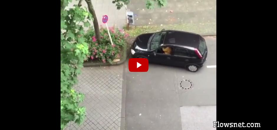 VIDEO: SIEVIETE CENŠAS NOPARKOTIES
