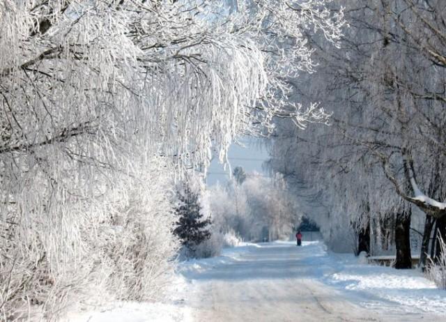 sniegs.jpg
